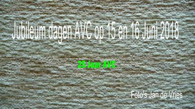 AVC-jubileumweekend-15-16-18-jenjdev-P1130987
